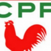 CPP UK BRANCH MEETING Sunday March 17 2013
