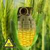 Stronger plant variety protection may threaten the right to food