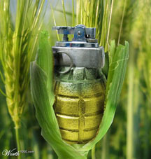 corn_grenade